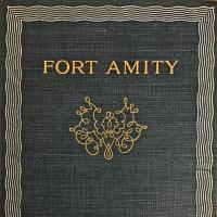 Cover of Fort Amity